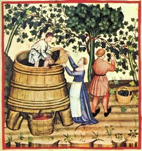 Le vin et ses métamorphoses