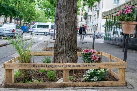 Ecologie urbaine : Aux arbres citoyens !